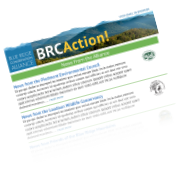 BRCA monthly e-Newsletter