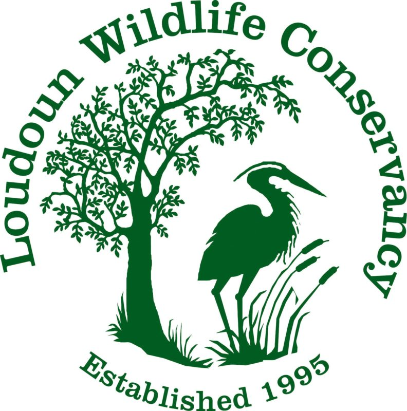 Loudoun Wildlife Conservancy