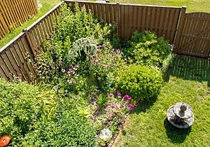 Townhouse backyard wildlife habitat