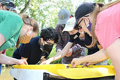 searching for benthic macroinvertebrates